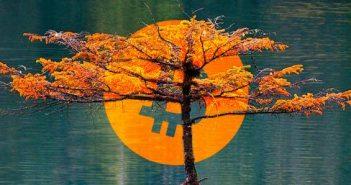 Bitcoin (BTC) a jeho stabilita: Signál pre rast alebo pád?