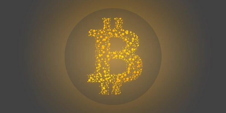 Bitcoin Halving - Bull Run - Google Trends