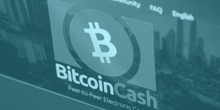 Bitcoin Cash - Roger Ver - BCH